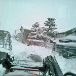 雪が融けたら、春になる(^o^)