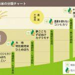 お米は、何で選ぶ?「農薬」or「肥料」or「その両方」?