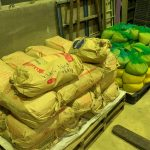 種子をネット袋に品種ごとに色分け