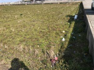 田んぼに捨てられたゴミ