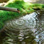 今日は「世界水の日」です