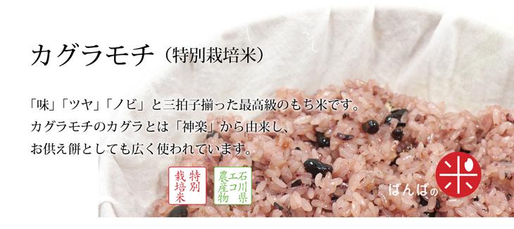カグラモチ(特別栽培米)