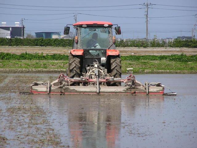 ばんばの自然栽培米代掻き