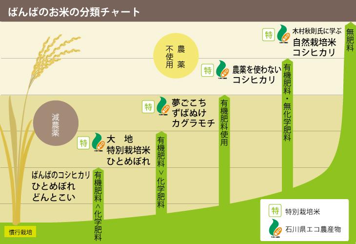 ばんばのお米の分布チャート