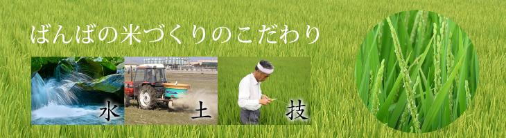 米づくりのこだわり
