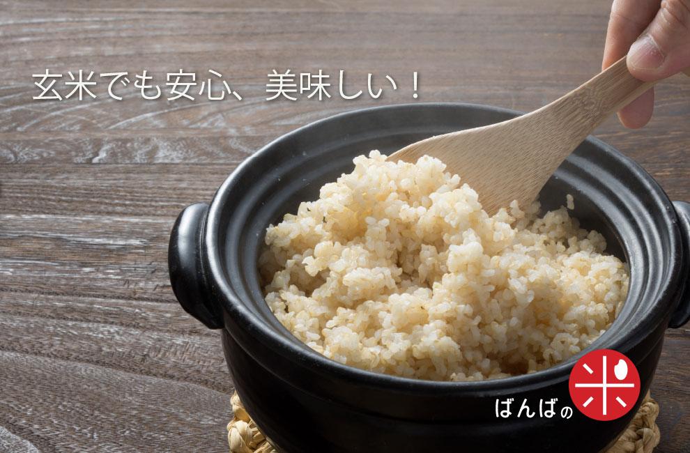 玄米ライフ